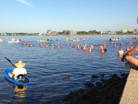 3 Mile Bridge Swim_18